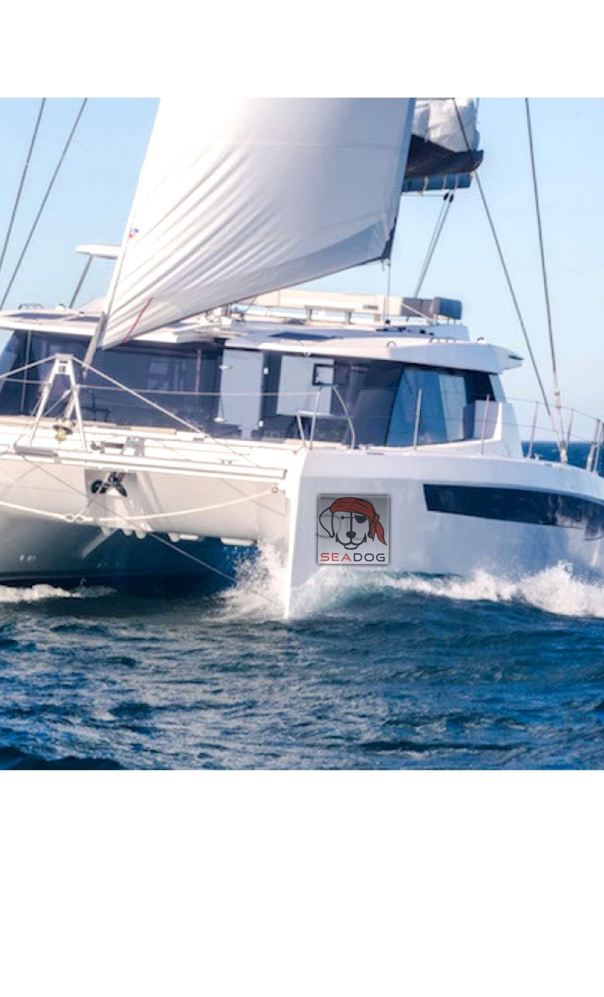 SEA DOG Yacht Charter - Ritzy Charters
