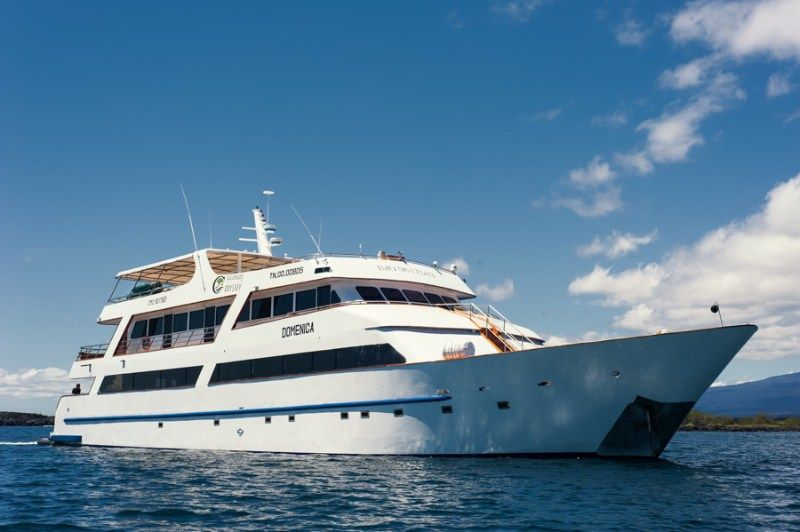 GALAPAGOS SEA STAR JOURNEY Yacht Charter - Ritzy Charters
