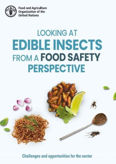 Looking at edible insects from a food safety perspective