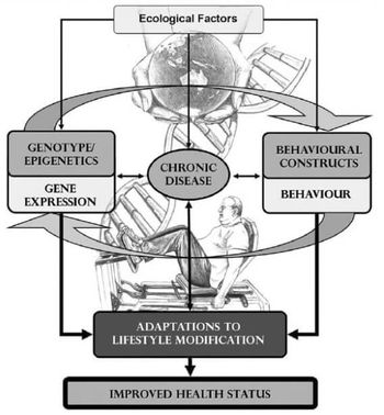 International Exercise Recommendations in Older Adults (ICFSR): Expert Consensus Guidelines