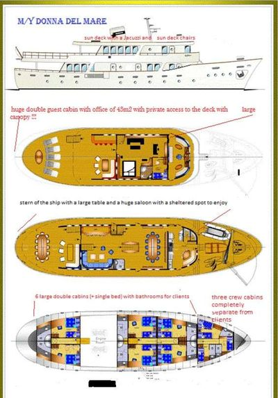 Yacht Charter DONNA DEL MARE Layout