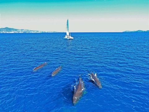 Yacht Charter Groovy   Ritzy Charters