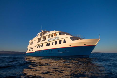 Yacht Charter Natural Paradise | Ritzy Charters