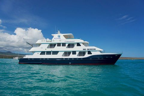 Yacht Charter Cormorant | Ritzy Charters