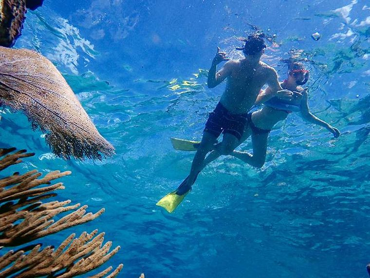 PELICAN Yacht Charter - Snorkeling is great!