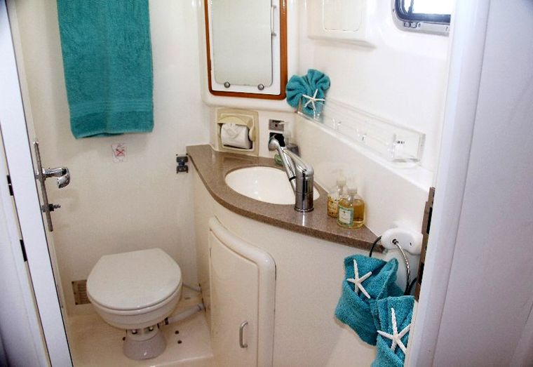 DREAMING ON Yacht Charter - Spacious guest bath w/electric toilet