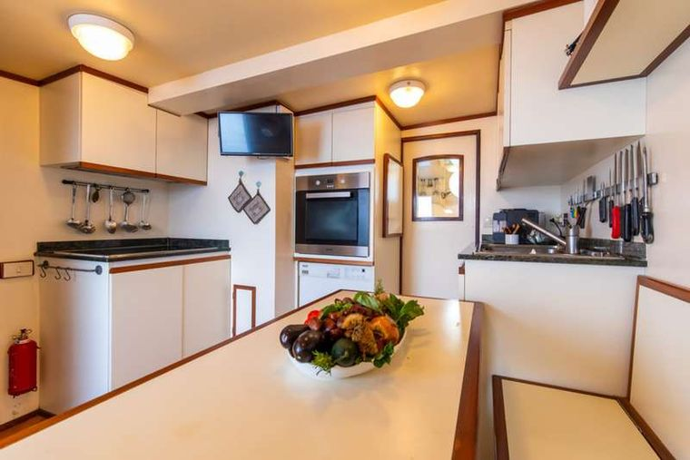 DP MONITOR Yacht Charter - Galley