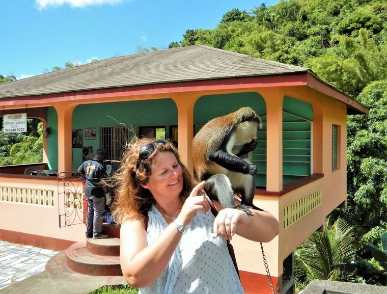 AOIBH Yacht Charter - Monkeying around