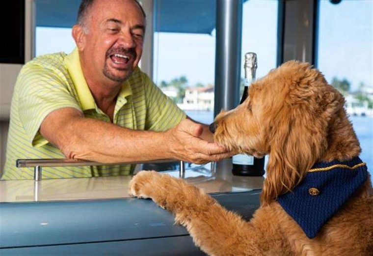 HIGHLINE Yacht Charter - Owner's hypoallergenic Golden doodle gets a bar treat