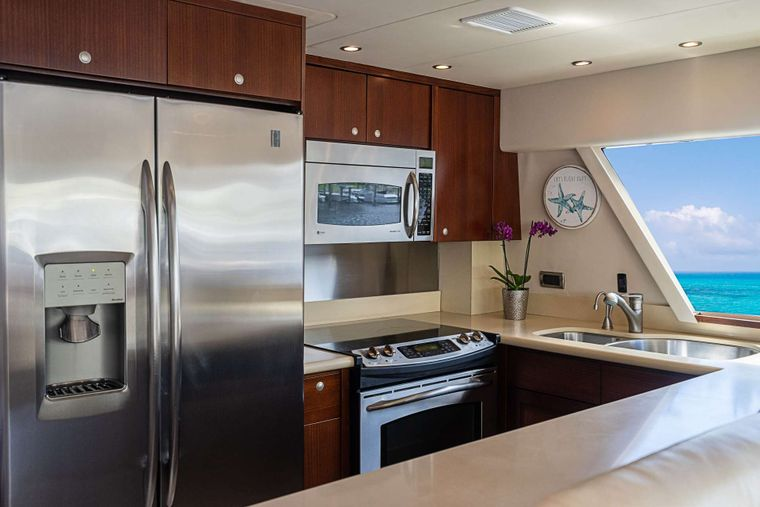 TRUE NORTH Yacht Charter - Galley aft