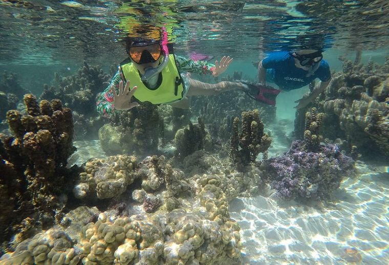 ORION Yacht Charter - Snorkeling
