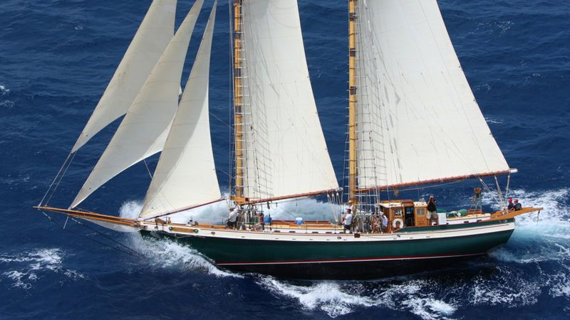 TREE OF LIFE Yacht Charter - Ritzy Charters